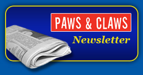 Paws and Claws Newsletters